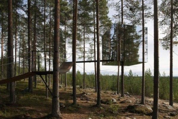 Гнезда для людей и другие невероятные дома на деревьях